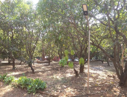 Atasa Eco Resort Panvel Others 10